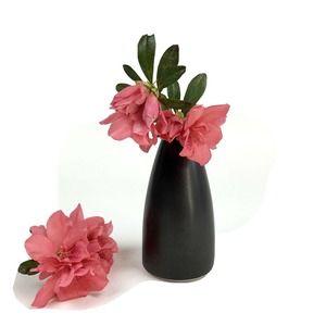Jonathan Adler Porter Pot A Black Matte Bud Vase